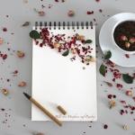 Buch schreiben